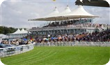Glorious Goodwood Racecourse